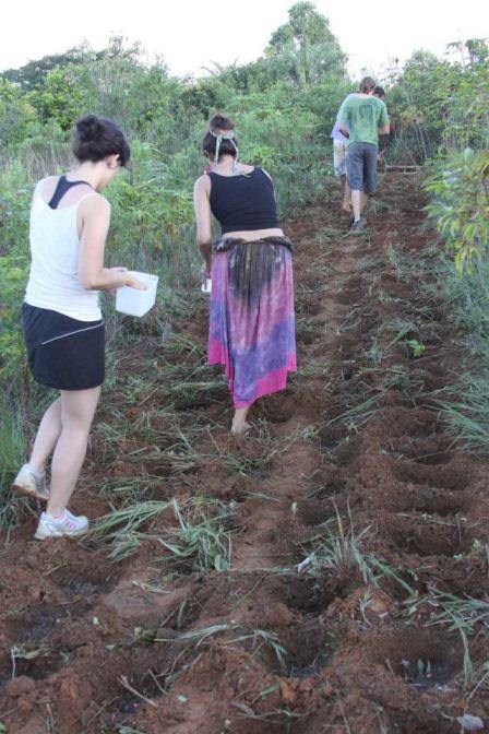 Eu e a terapeuta Kelly (a pessoa mais caaaalma ever) plantando milho e feijão orgânicos. Fotos do Bruno-the-boyfriend.