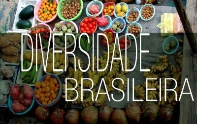 Diversidade Brasileira: tema da IV Bienal de Design.